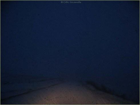 driving_9839 blog